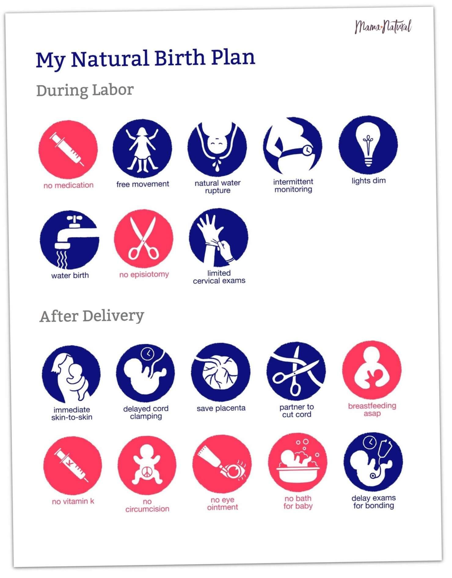 Free Visual Birth Plan Template (Doctors & Nurses Love ...
