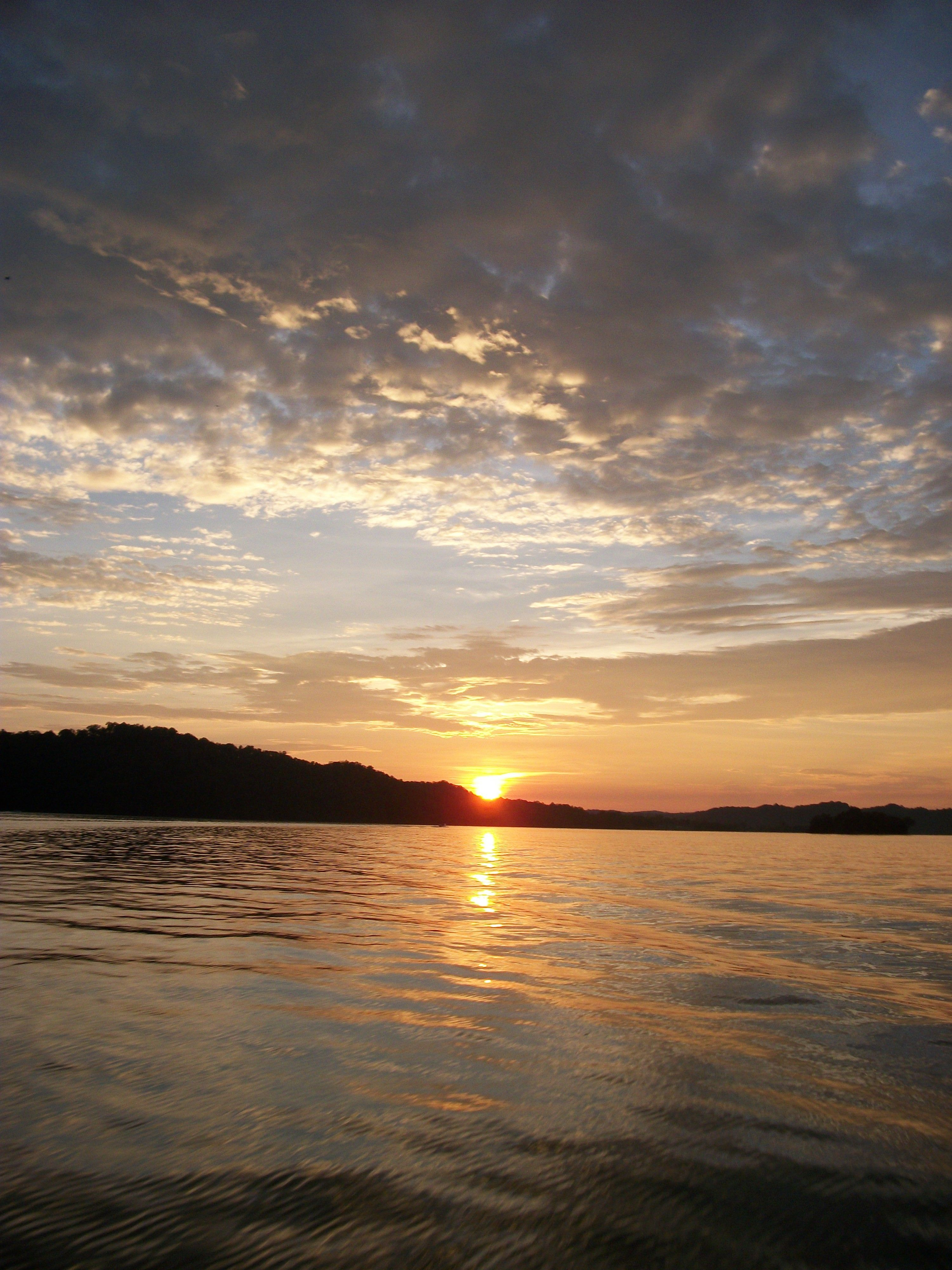 rentals diver s in dale lake cabins cabin ky pin pinterest hollow places lakes island