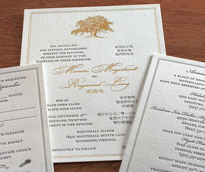 Elegant Gold Foil And Grey Letterpress Ink Wedding Invitation With Vintage  Style Oak Tree And Classic