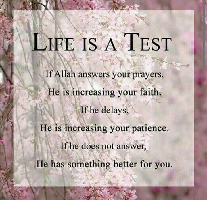 Test To Increase Iman Self Reflection Pinterest Islam Islamic