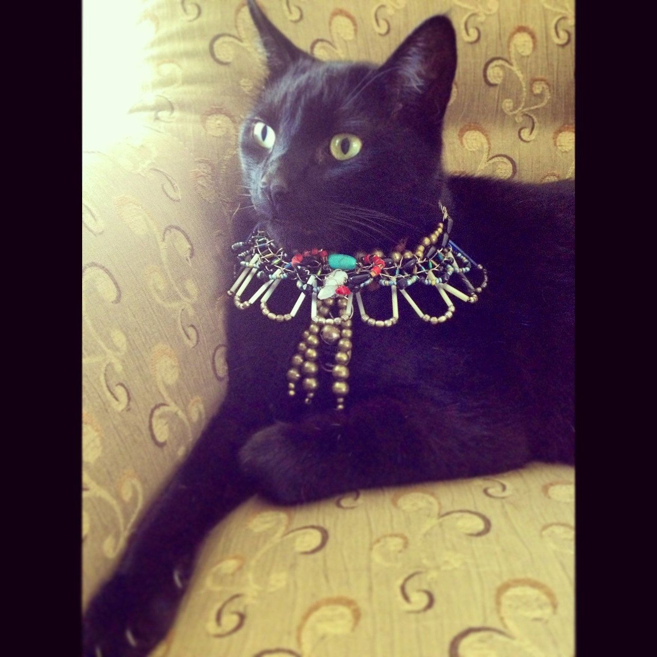Bastet Custom Egyptian Scarab Cat Collar made with by