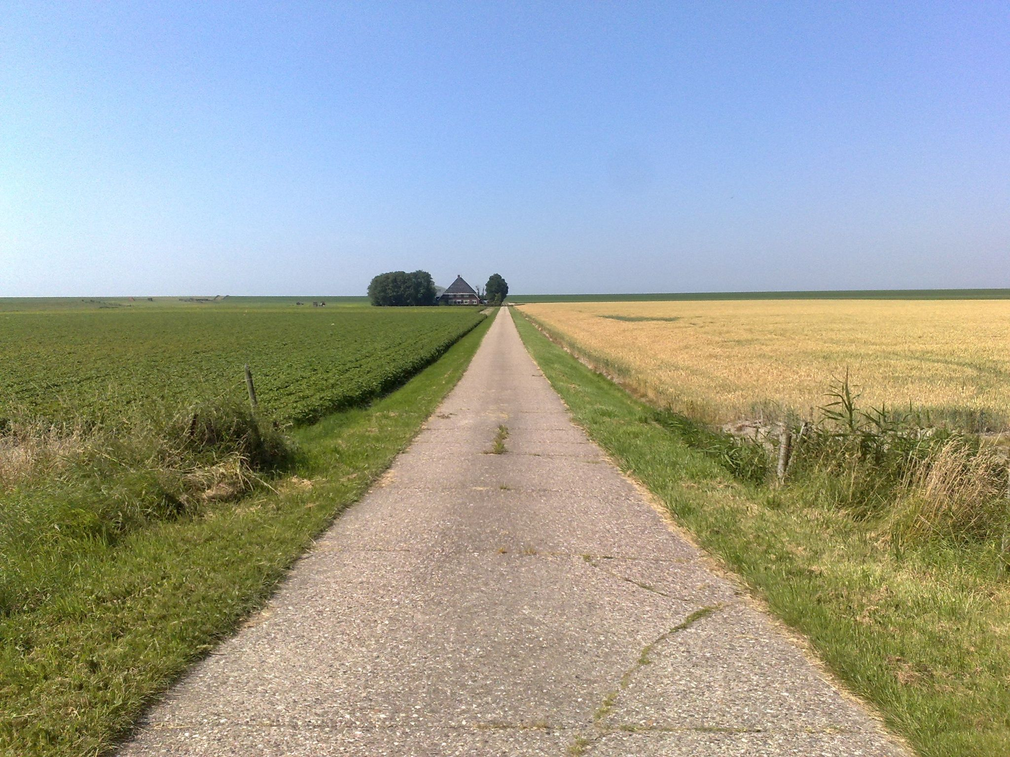 Het Bildt, een Friese gemeente aan het Wad.