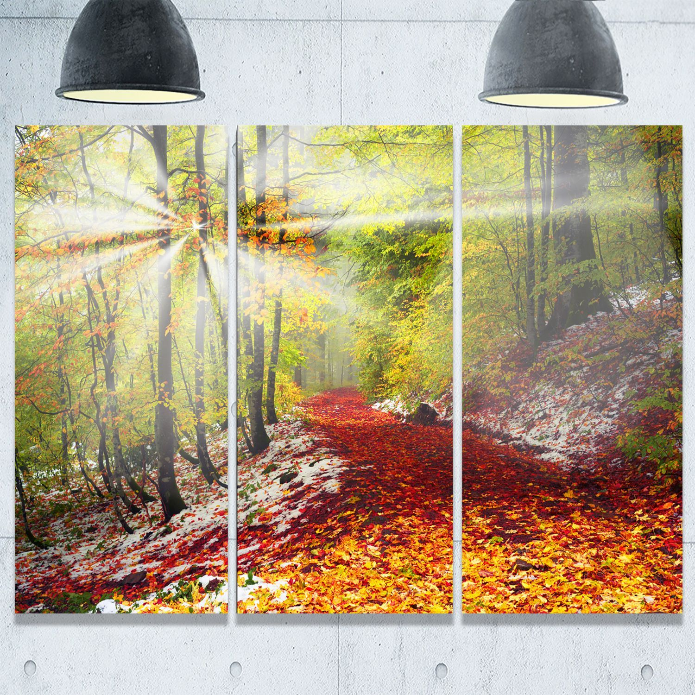 Designart - Bright Colorful Alpine Forest - Landscape Photo Glossy ...
