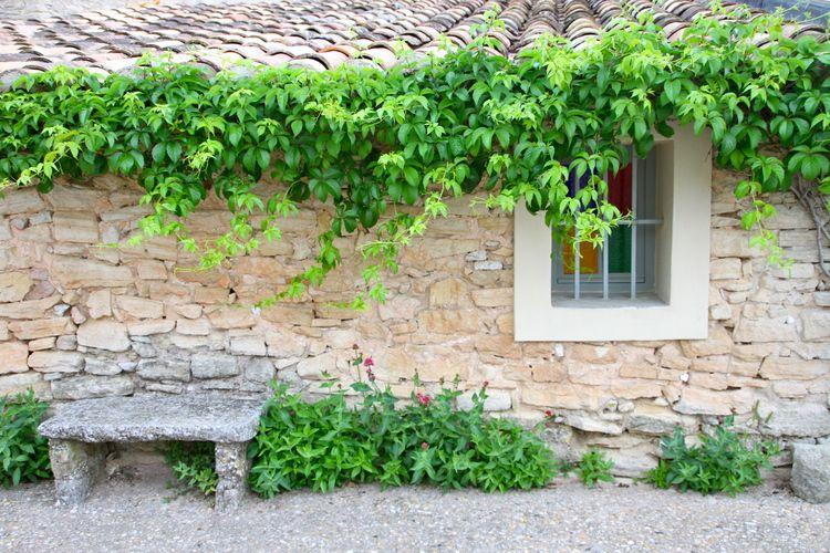 Crillon Le Brave, Provence, France.