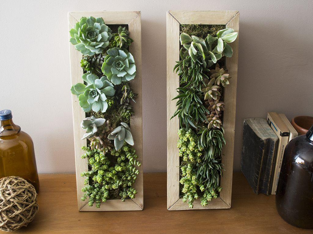 Cuadro vivo 45x15 cm kentia decosustentable jardines - Macetas para jardin vertical ...