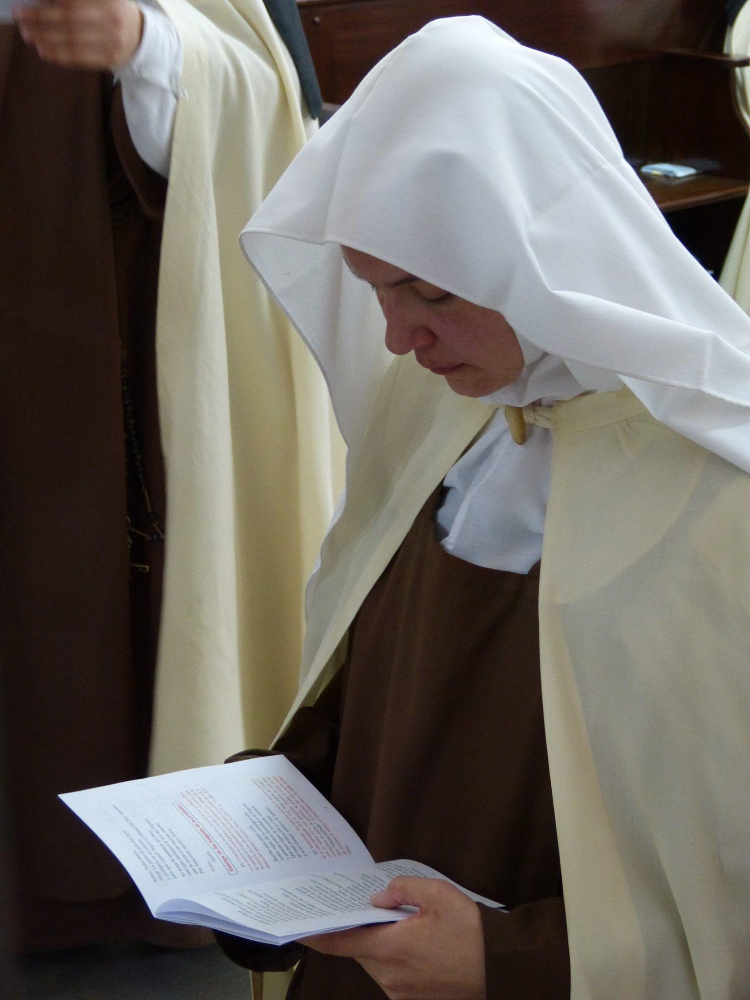 Carmelitas Descalzas, Virrey del Pino, diócesis de Gregorio de Laferrere    Católico, Vocações, Religioso