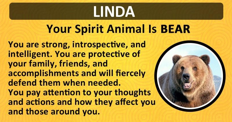 Find out what is your Spirit Animal!   Spirit animal, Your ...
