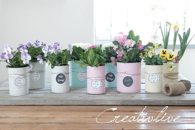 Upcycling Konserven-Dosen in Pastellfarben