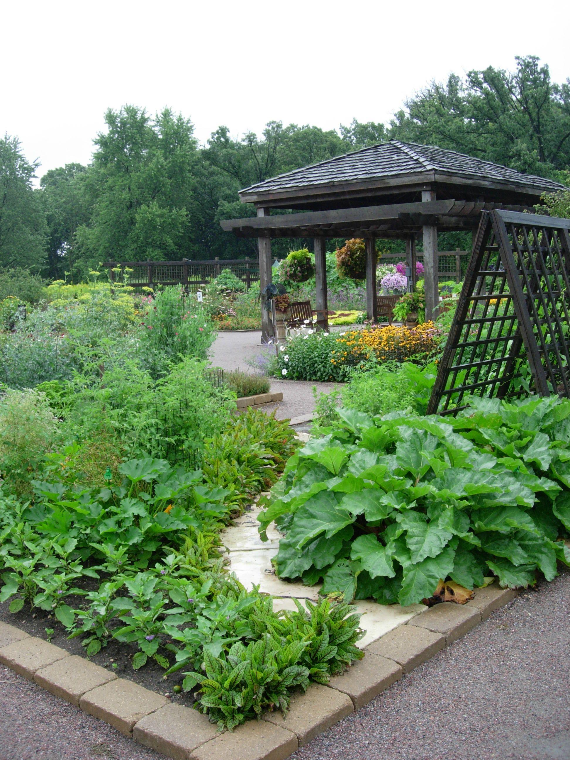 Friday March 5 Backyard Vegetable Gardens Garden 640 x 480