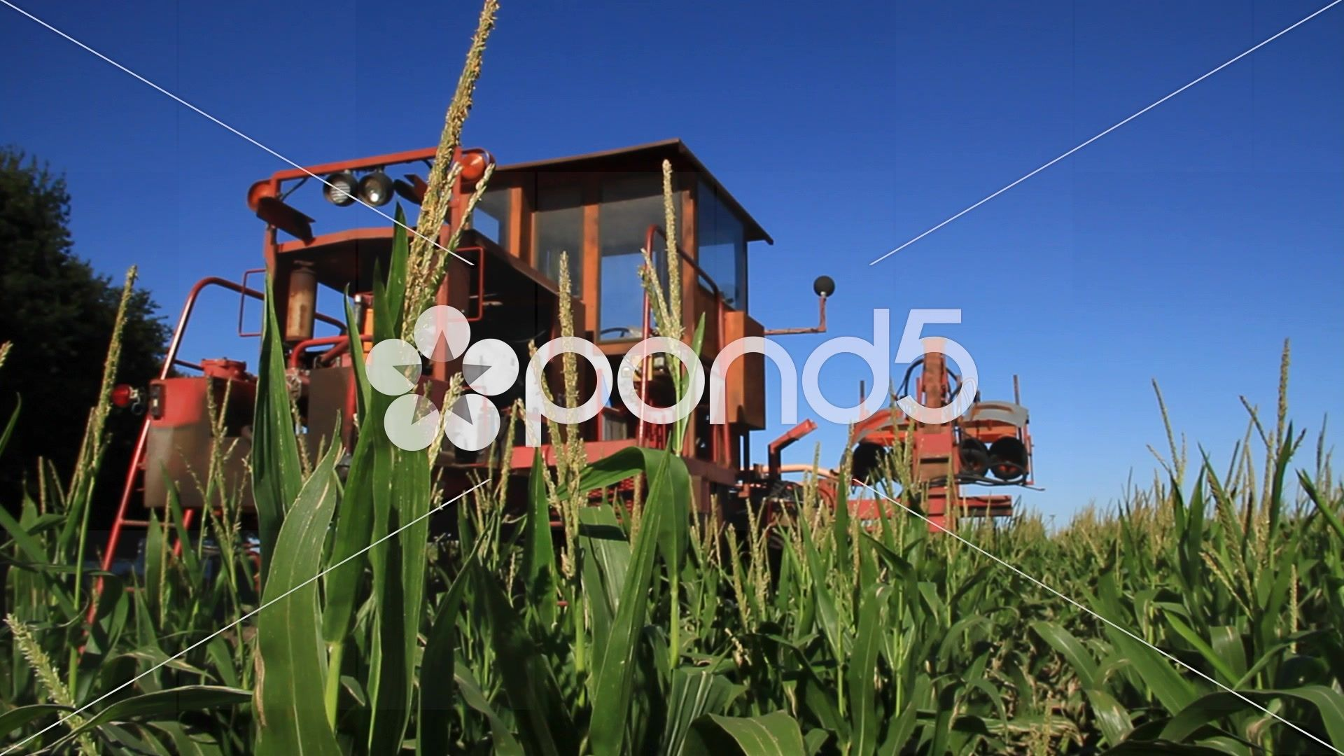 Special Tracktor in farm, Corn, Pergamino, Buenos Aires - Stock Footage | by buclefilm