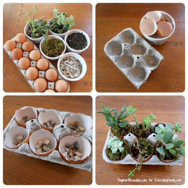 DIY Succulent Garden in Egg Cartonhttp://www.everydayfamily.com/blog/diy-succulent-garden-in-egg-carton/