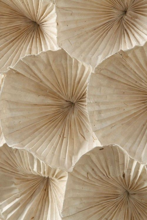 ROBERTADEVISATE:Light detail