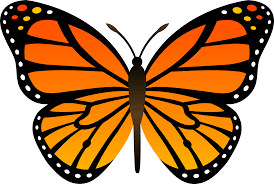 Monarch Butterfly Day Free Event Butterfly Clip Art Monarch Butterfly Butterfly Drawing