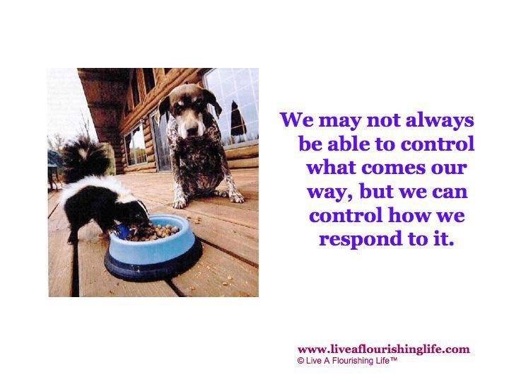 Words of wisdom from Live A Flourishing Life on Facebook. Visit www.liveaflourishinglife.com