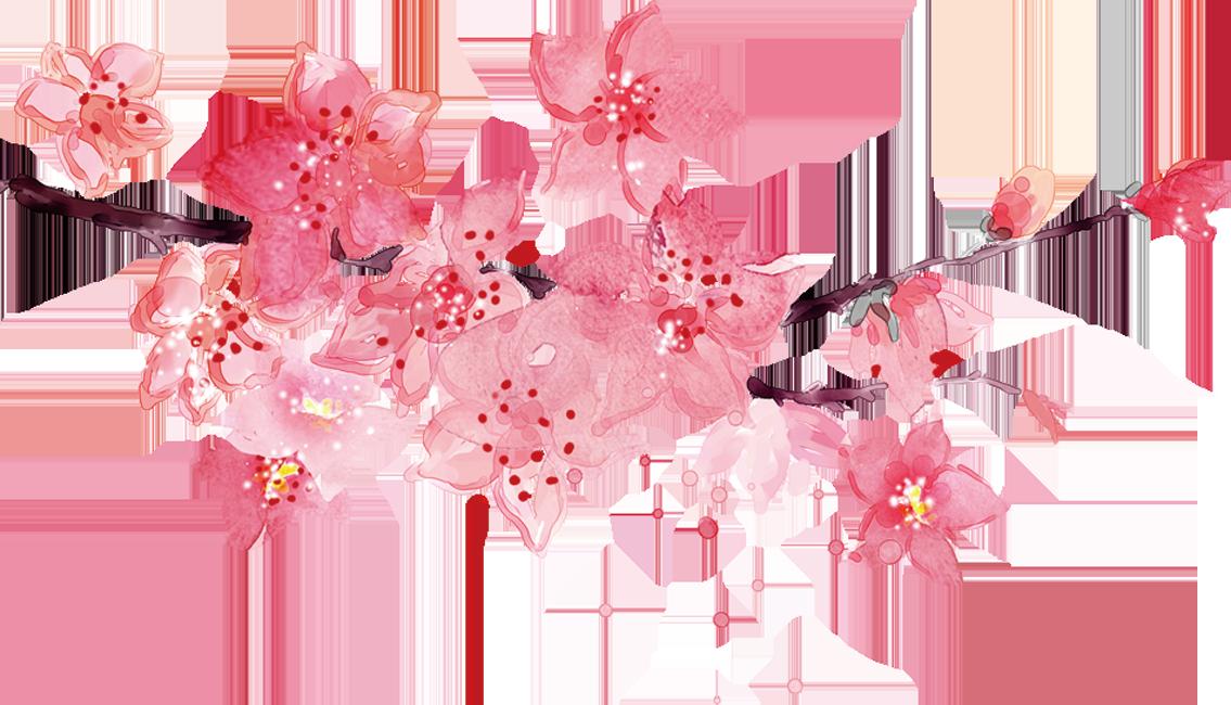 Sakura Background | ศิลปะ