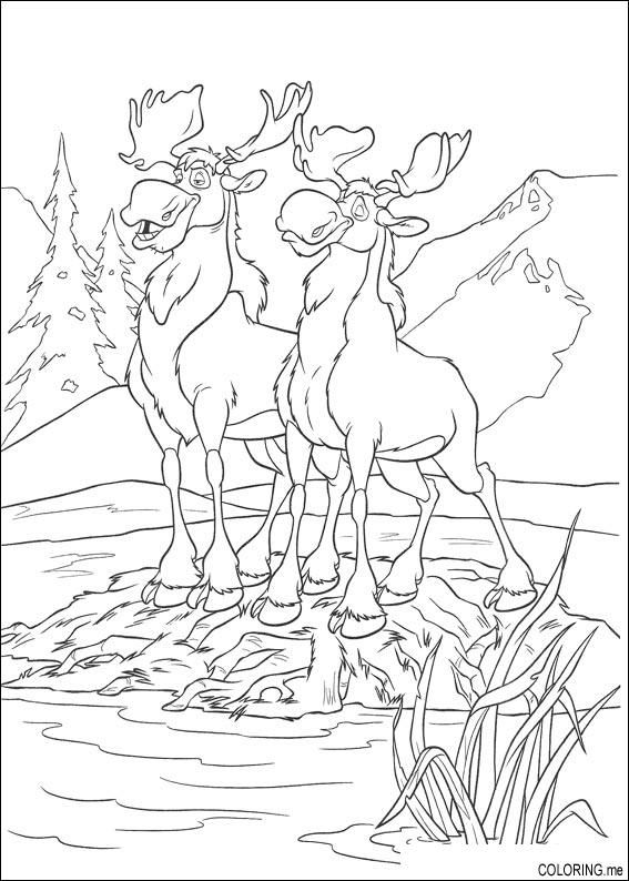 moose coloring pages - Google Search | Doodle | Pinterest | Moose ...