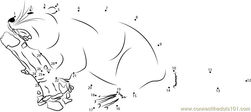 Beaver Cutting A Tree Dot To Dot Printable Worksheet