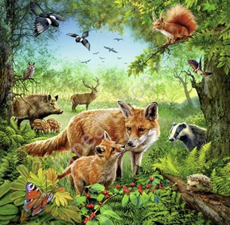 Флора и фауна, картина раскраска по номерам, размер 40*50 ...