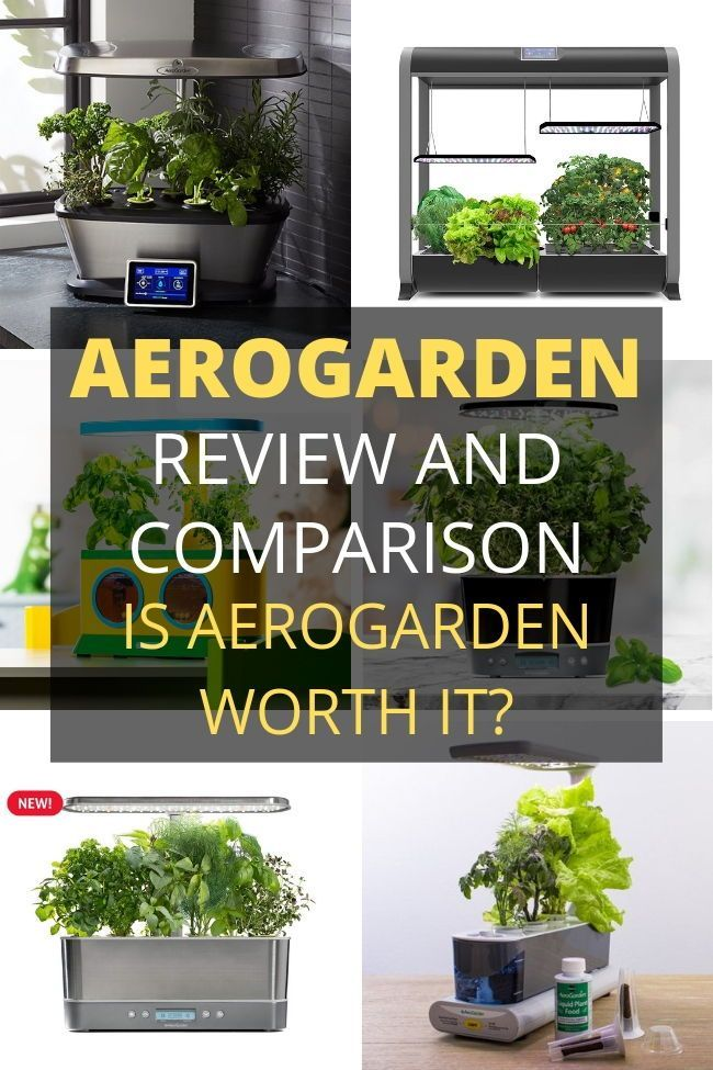 Aerogarden Reviews Comparison And Buying Guide These 640 x 480