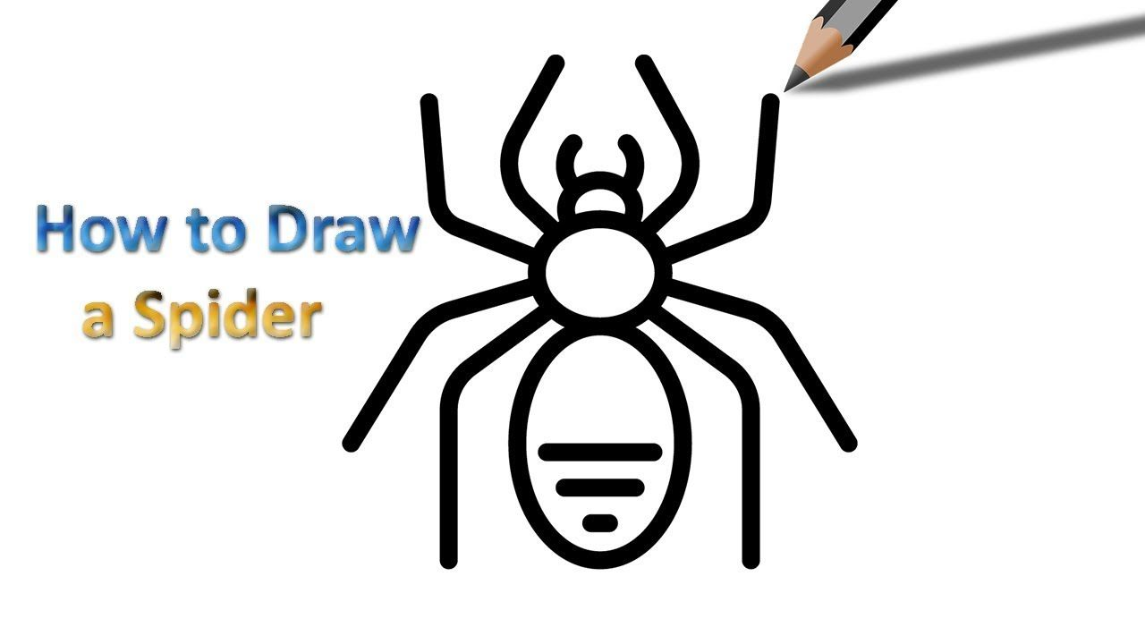Uncategorized How To Draw Spiders spider drawing step by pinterest easy drawings how to draw a for beginners drawing