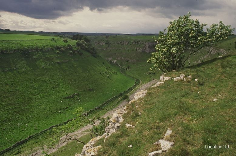 Derbyshire Dales National Nature Reserve | Derbyshire Dales NNR nature reserve Photo Shoot Filming Location ...