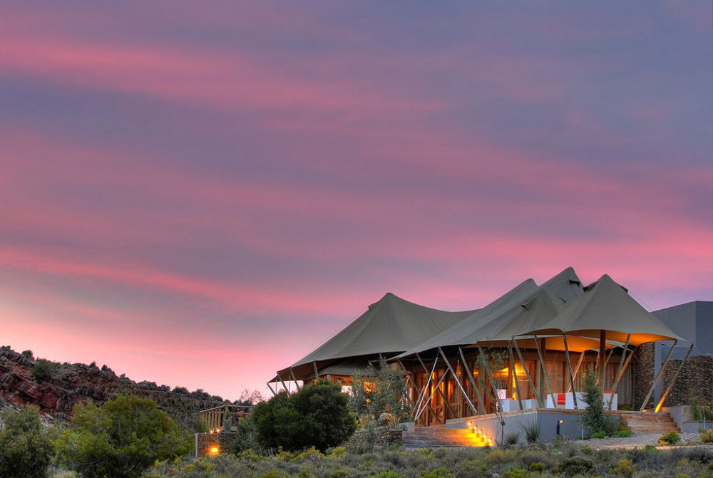 Dwyka Tented Lodge in 2020 Safari lodge, Glamping