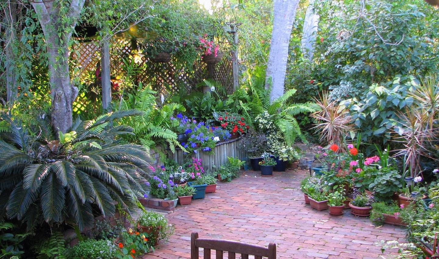 Garden And Lawn , Best Courtyard Garden Designs : Tropical ... on Tropical Small Backyard Ideas id=61225