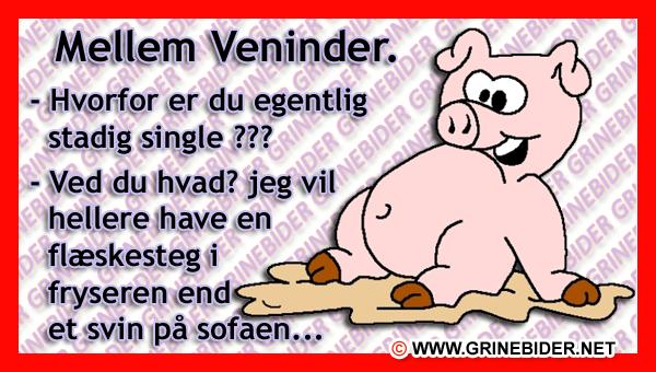 citater veninder Mellem Veninder. | Danske citater, ordsprog og digte | Funny  citater veninder