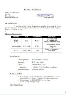 Template Untuk Cv Sample Template Beautiful Excellent Professional