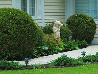 Landscaping The North Side Of A House Article By James Kohut Foundation Planting Landscape Garden