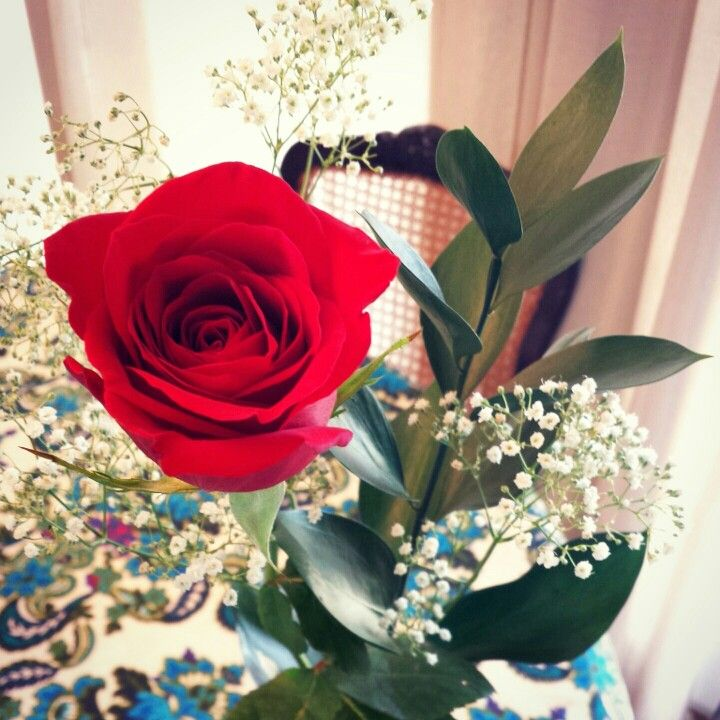 I love red roses!!