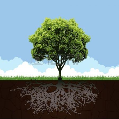 arbre avec des racines et l 39 herbe arbres pinterest racines peindre un tableau et herbe. Black Bedroom Furniture Sets. Home Design Ideas