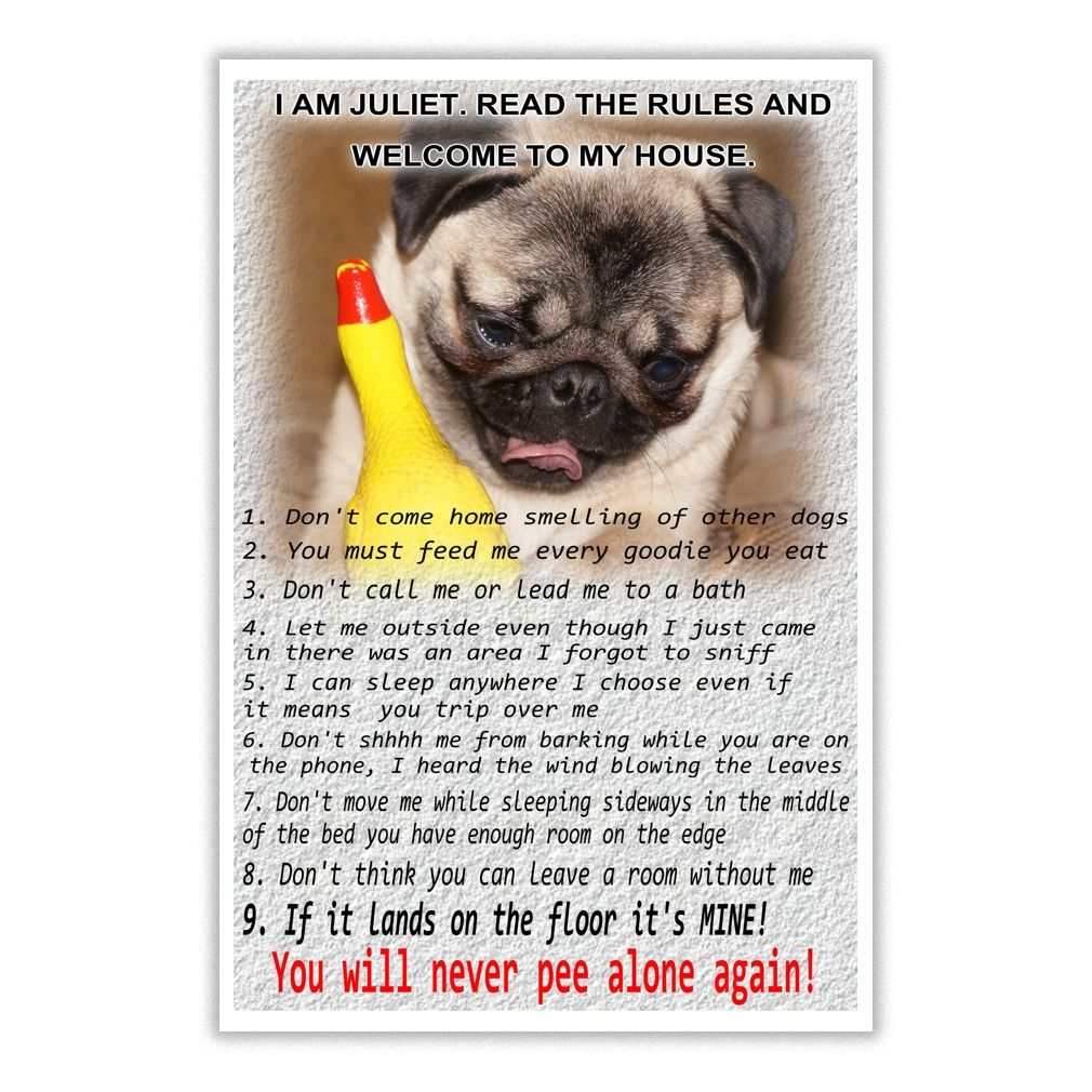 Pug house rules prints pugs and pug puppies supplies gear pug house rules prints nvjuhfo Images