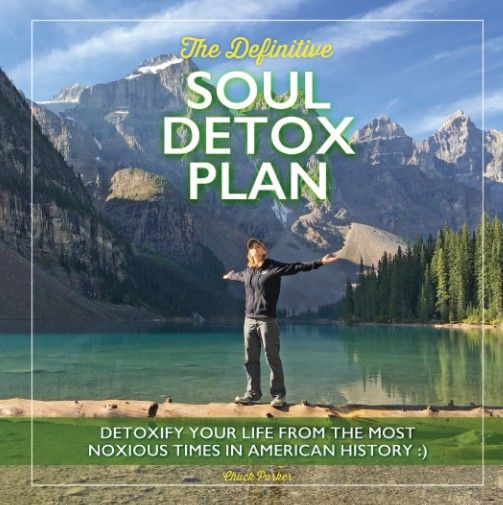 The Definitive Soul Detox Plan hardcover book for inspirational encouragement will help you detoxify your mind and soul from the noxious times we're all going through these days.  Enough.  We need to hug our loved ones, our children, our furry babies, breathe in the smell of fresh flowers, dance like noone's watching, laugh till our face hurts, go to the most beautiful places and absorb their sublime beauty and peace.  Let us heal :)