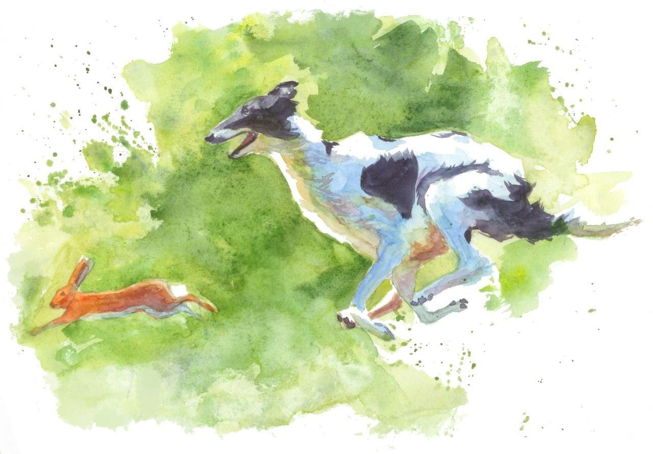 #watercolor #watercolorart #animal #animalsart #dogs #watercolorartwork #dogsart