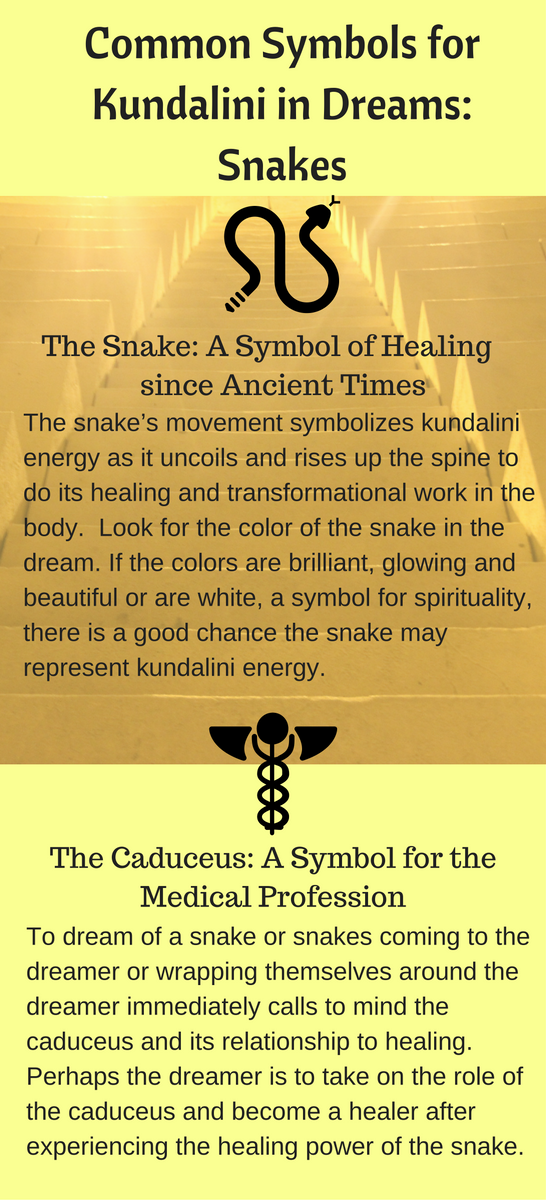 Common Symbols For Kundalini In Dreams Snakes Pinterest
