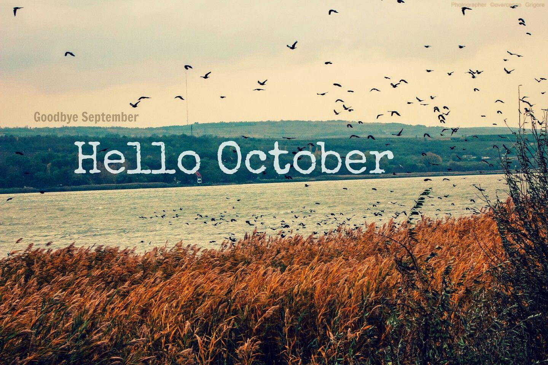 Bon Hello October