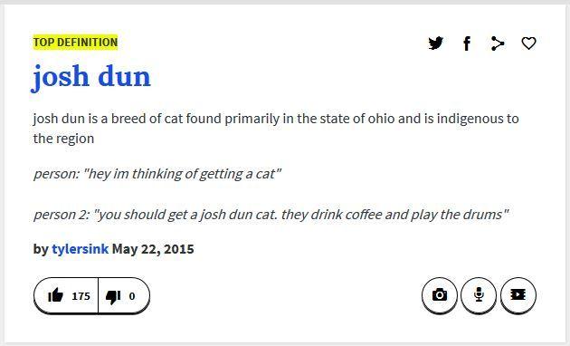 When Urban Dictionary Understands Josh Dun More Than I Do.