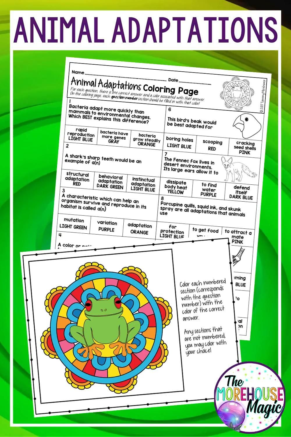 Animal Adaptations Science Color By Number Activity [Video]  Animal  adaptations, Life science middle school, Adaptations science