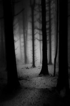 Unknown Dark Alone Dark Photography Light In The Dark Dark Forest