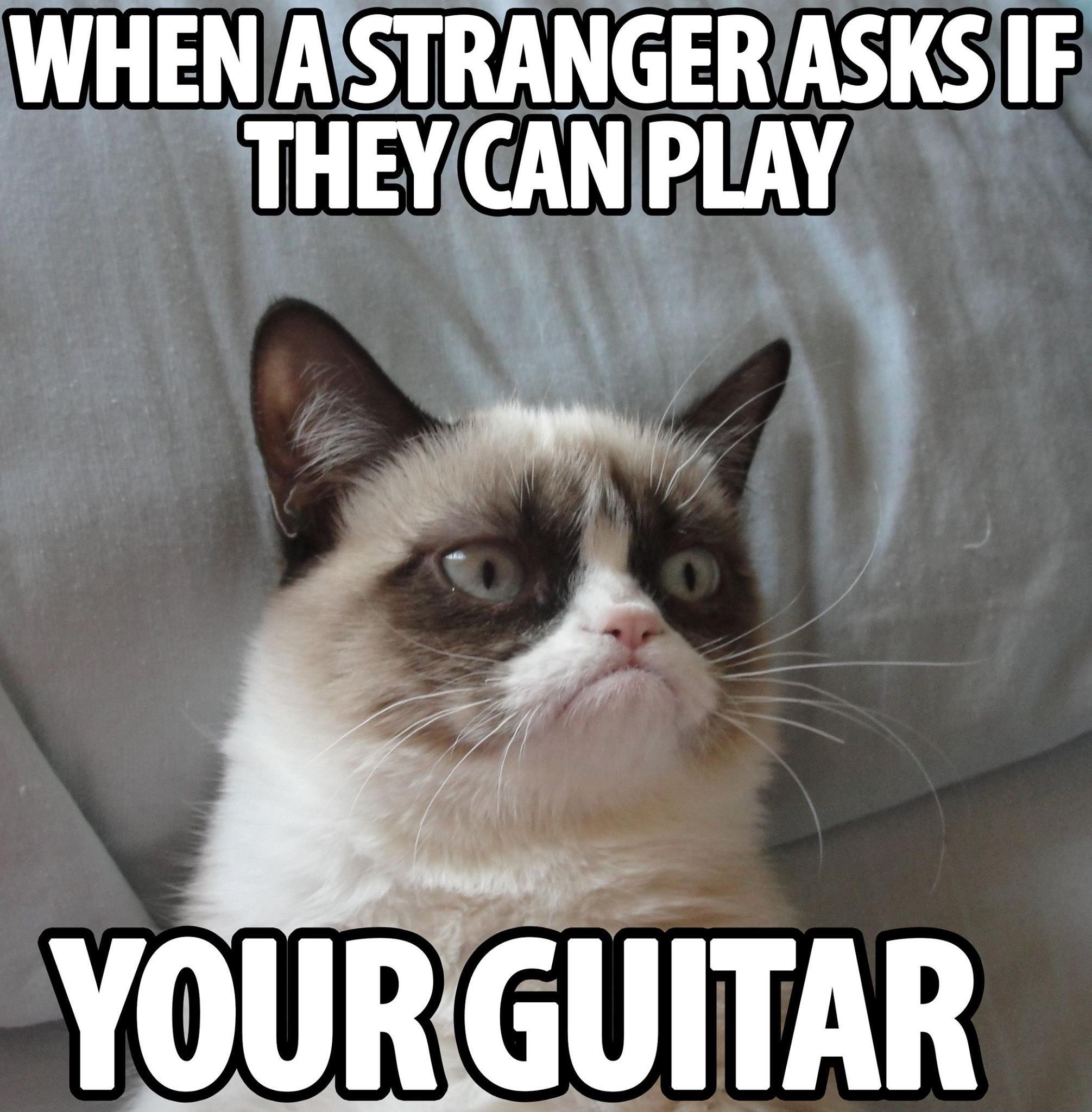 4d827c893b047b009d2a1d669923017b grumpycat meow guitars meme music addicted animals,Meow Meme