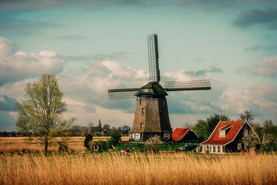 ***Holland in spring by Adrian Popan 15