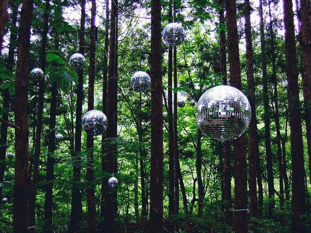 A Rotating Disco Ball In Tree Lit
