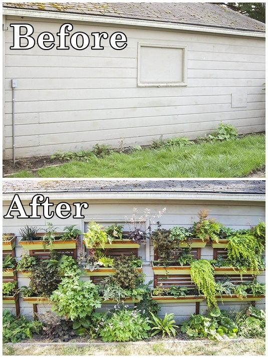 Plain Wall To Lush Vertical Garden - Gardening - Project - Small ...