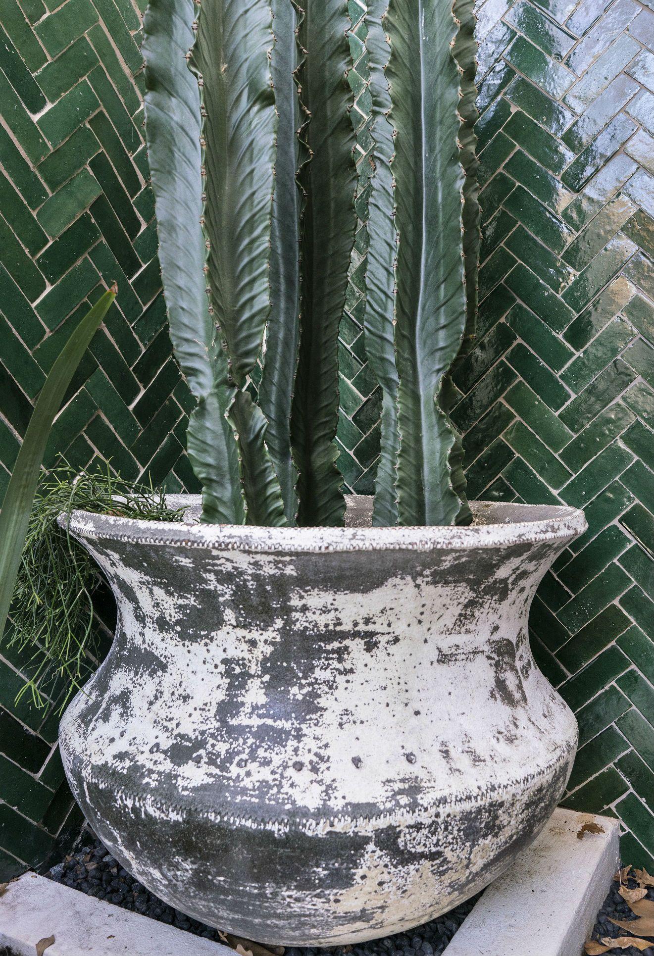 Woodfired Cauldron Planter pots, Cauldron, Garden