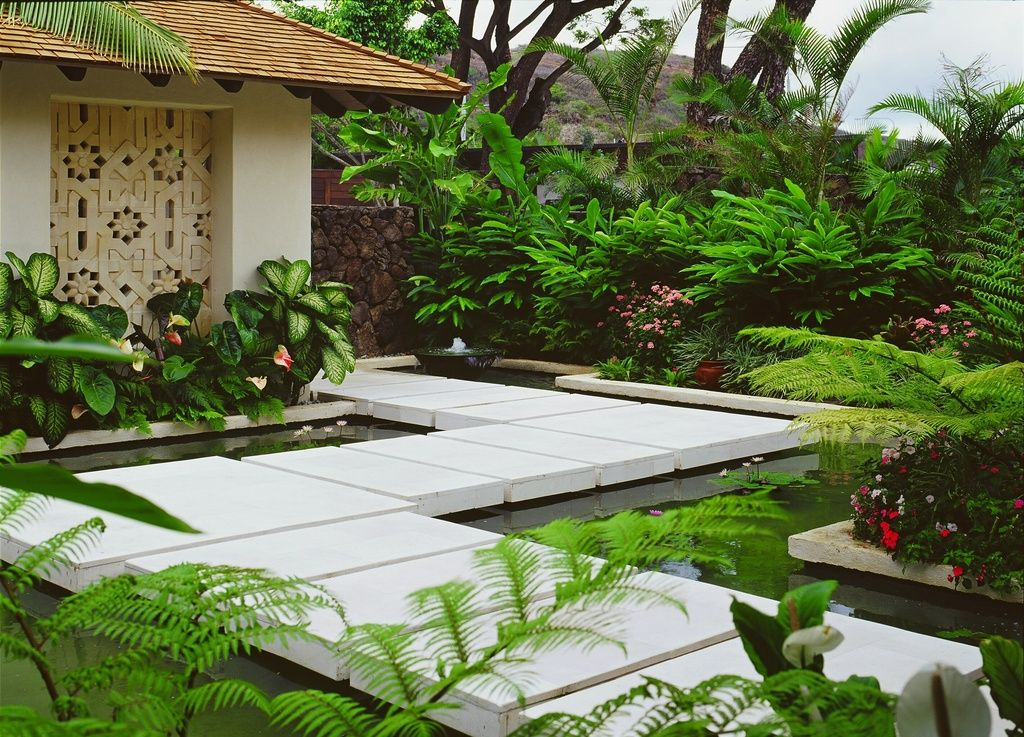 Tropical landscape yard with pathway fence beech fern for Tropical elevated house designs