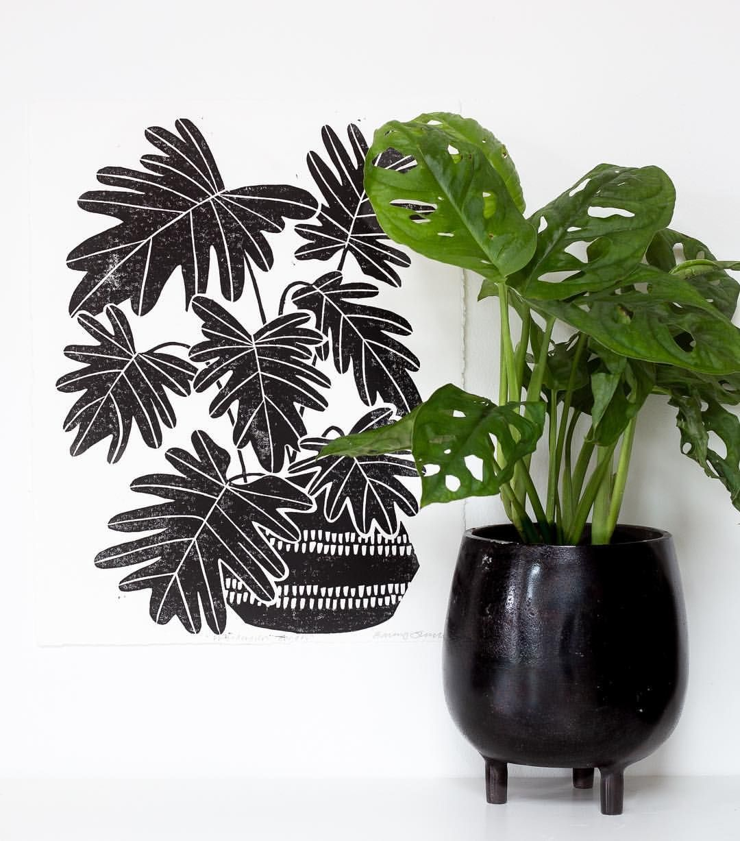 One of my personal favourites, my 'Philodendron Xanadu' print  Link