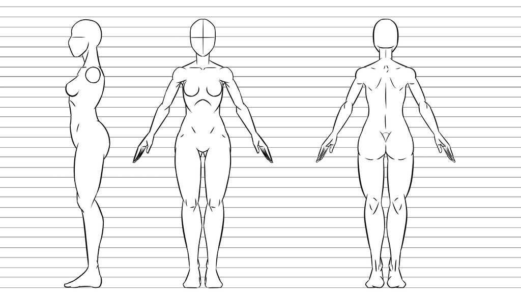 Character Design Base Female By Kingvego Deviantart Com On Deviantart In 2020 Character Design Character Drawing Character Reference Sheet