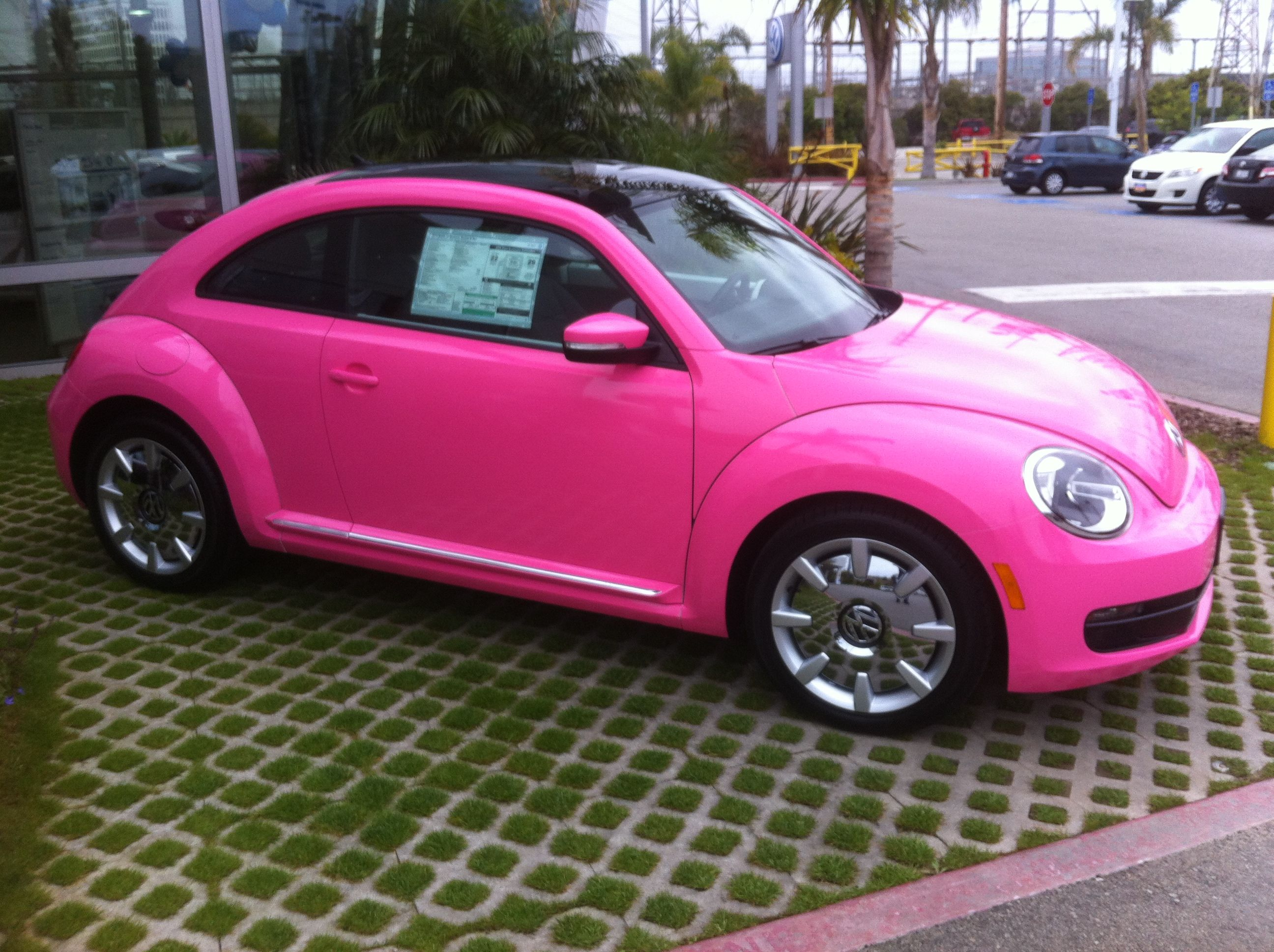 Hot Pink Beetle Cars 2017 Premier Auto Wraps Inc All Rights Reserved Site Design A