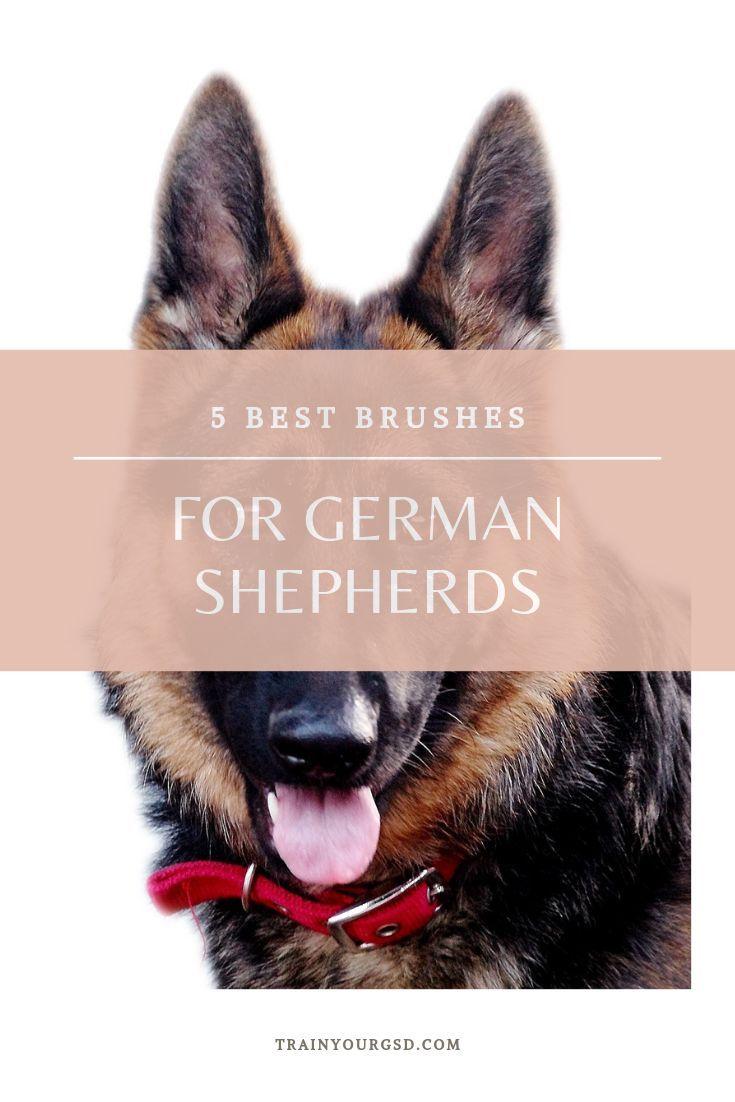 Best Brush For German Shepherd In 2019 For Short Medium And